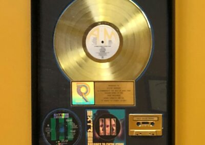 Steve Berger - GOLD RECORD - 1