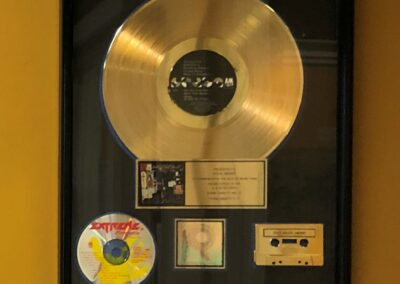 Steve Berger - GOLD RECORD - 2
